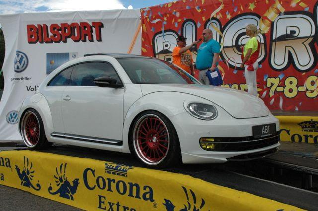 beetle13