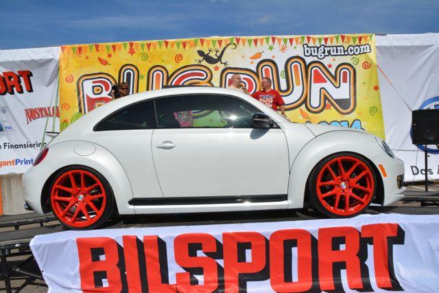 beetle14
